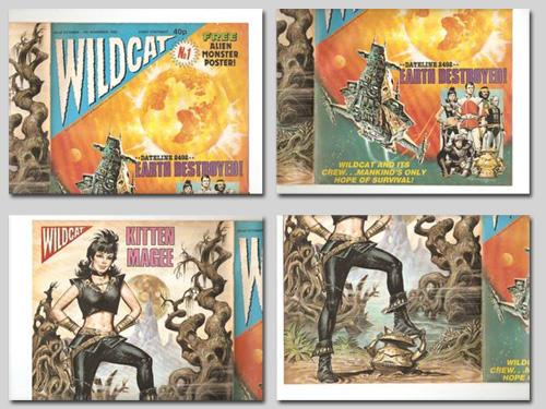 wildcat scans