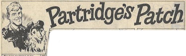 jet - partridge